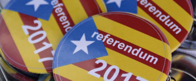 What's so controversial about referendums?